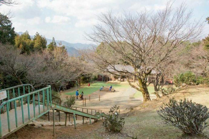 嵐山モンキーパークいわたやまの運動場