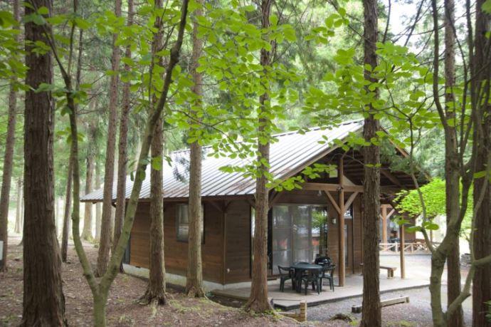 キャンプリゾート森のひとときの施設・サービスについて