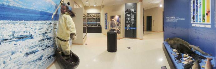 モヨロ貝塚館の展示室(貝塚)