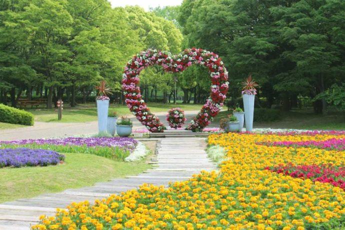 大阪市立長居植物園でカップルのフォトスポットとして人気の「ハート形の花壇」