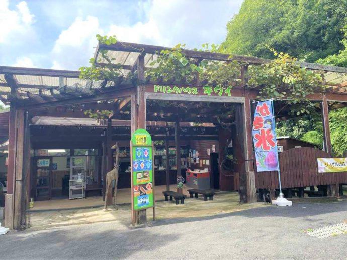 長崎県西海市にある「長崎バイオパーク」内で軽食を楽しめる飲食店「キウイ」