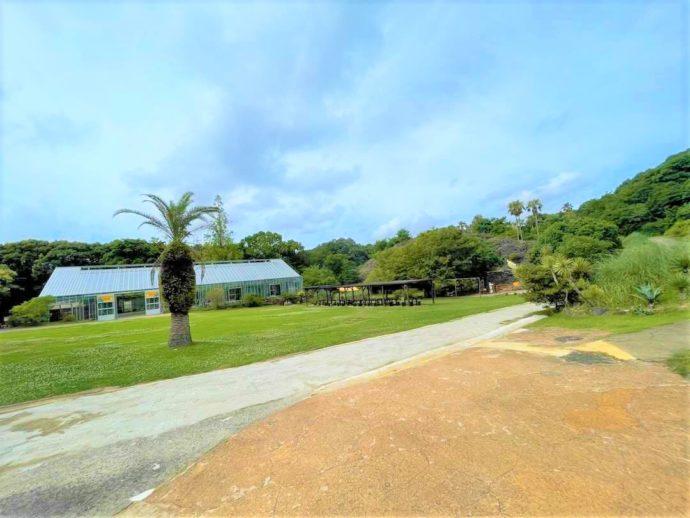 長崎県西海市にある「長崎バイオパーク」の芝生エリア