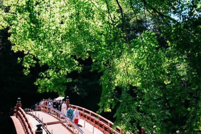 夏の新緑の中で行われる神橋幸せ渡り初め