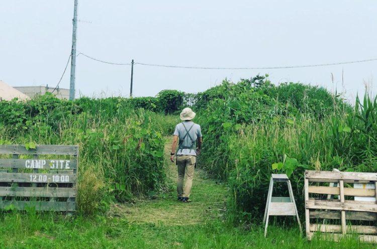 千葉県柏市にある「奥手賀ツーリズム Kingfisher Garden」のキャンプサイトイメージ