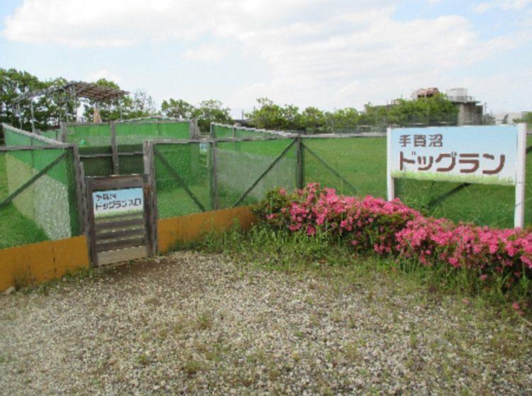 千葉県柏市にある「奥手賀ツーリズム Kingfisher Garden」のドッグラン