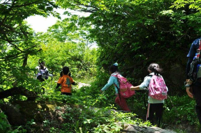 恐羅漢エコロジーキャンプ場で開催しているOSORA学校