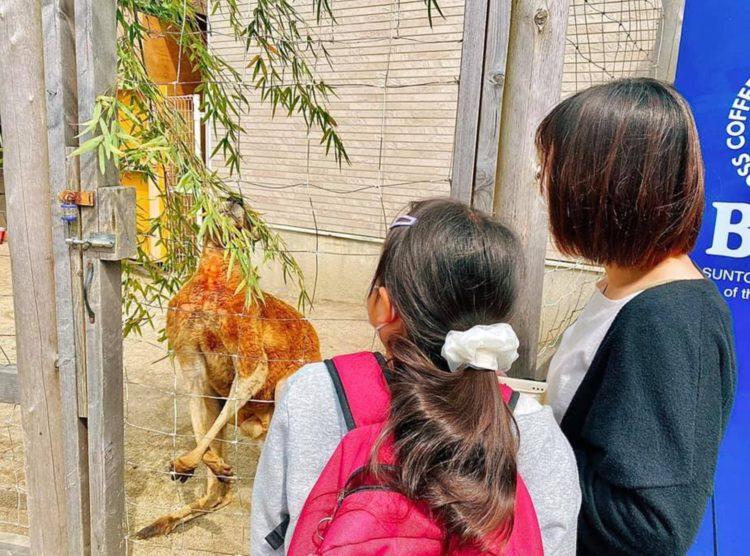 福岡県飯塚市にある「ピクニカ共和国」の利用者の服装