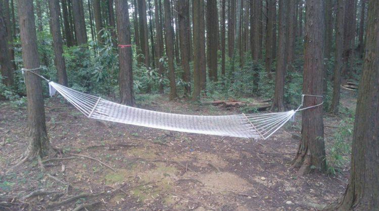 福岡県飯塚市にある「ピクニカ共和国」のハンモックの森