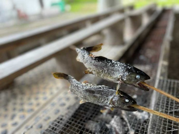 岡山県新見市にある別所アウトドアスポーツセンターで魚を塩焼きにする様子