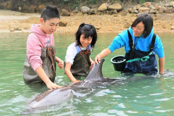 熊本県上天草市にあるわくわく海中水族館シードーナツでイルカとふれあう子供たち