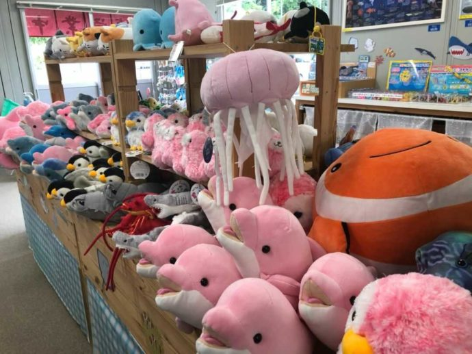 熊本県上天草市にあるわくわく海中水族館シードーナツのグッズが並ぶ様子