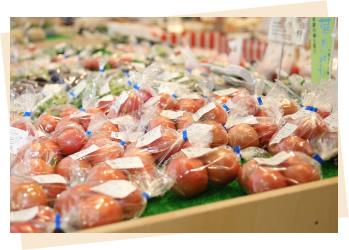 セリオンガーデンの新鮮な野菜