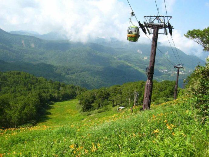 東館山高山植物園のリフトとニッコウキスゲ