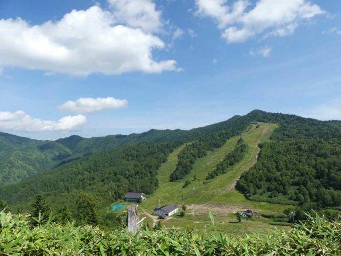 東館山高山植物園の山頂付近からの風景