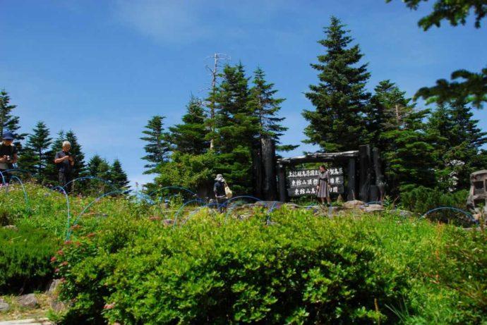 東館山高山植物園の手作り看板