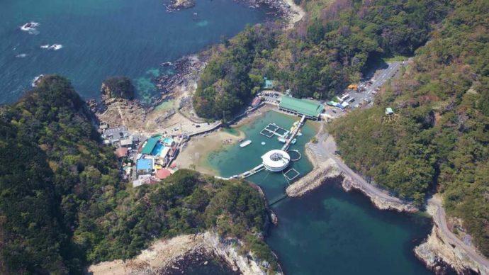 下田海中水族館の遠景