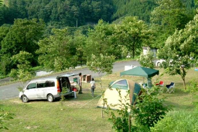 高瀬湖畔オートキャンプ場のオートサイトの様子