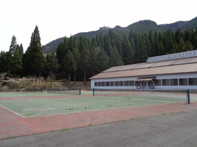 高瀬湖畔オートキャンプ場のスポーツ施設