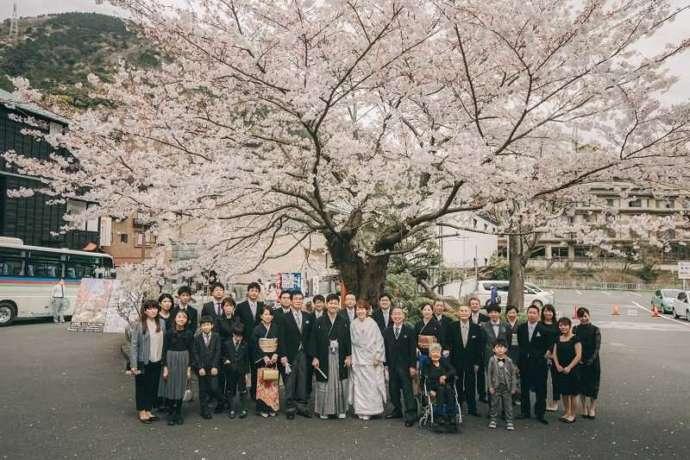 湘南プレミアムWeddingの結婚式で桜の木の下で集合写真を撮る