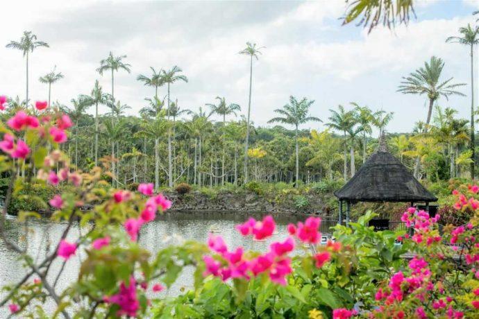 東南植物楽園の水上楽園