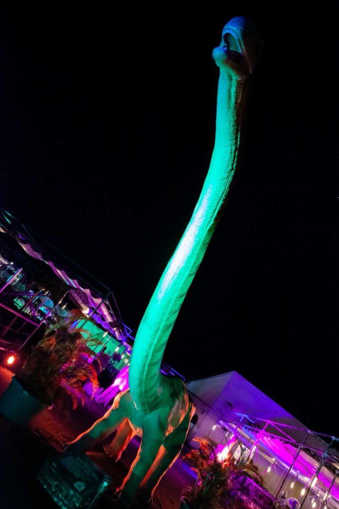 ステムリゾート ダイナソーミュージアムにある首の長い恐竜を見上げた図
