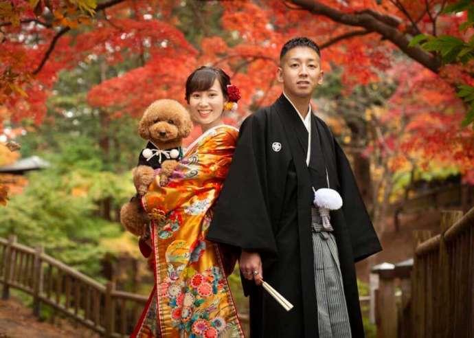 紅葉を背景に愛犬と撮った和装のウェディングフォト