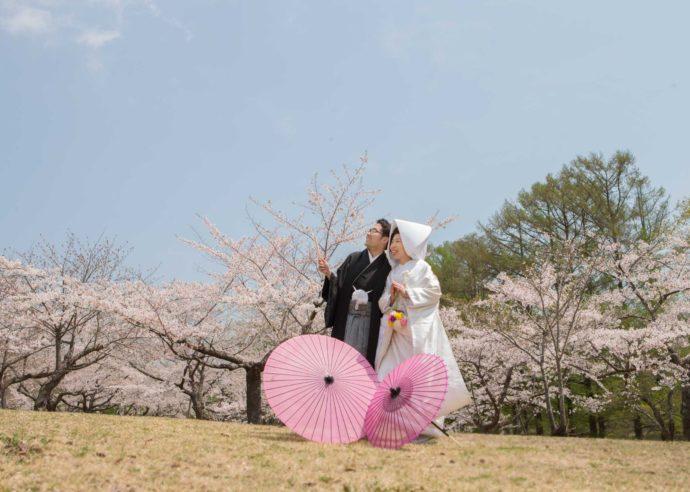 桜を背景に撮影したウェディングフォト