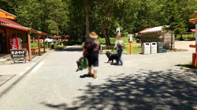 菅沼キャンプ村をペットと一緒に利用するカップル