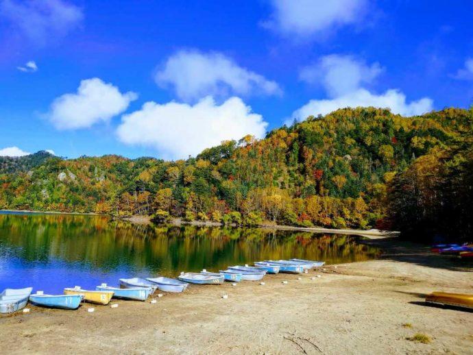 菅沼キャンプ村から見える青空を写した菅沼