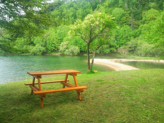 緑が美しい菅沼キャンプ村