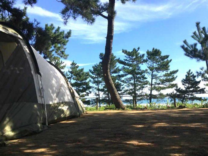 海を眺めることのできる大洗サンビーチキャンプ場のテントサイト