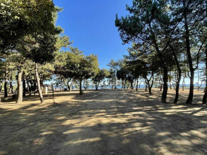茨城県東茨城郡にある大洗サンビーチキャンプ場の電源サイトエリア