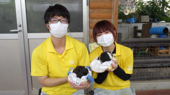長野県須坂市にある「須坂市動物園」で行うふれあいの様子