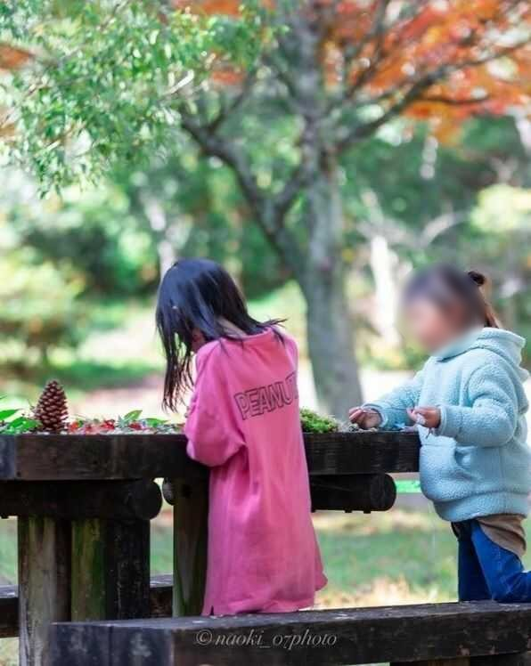 鯛生家族旅行村でのキャンプは四季それぞれの魅力あり