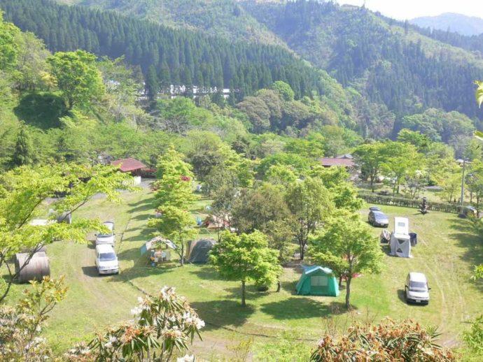 鯛生家族旅行村フリーテントサイト