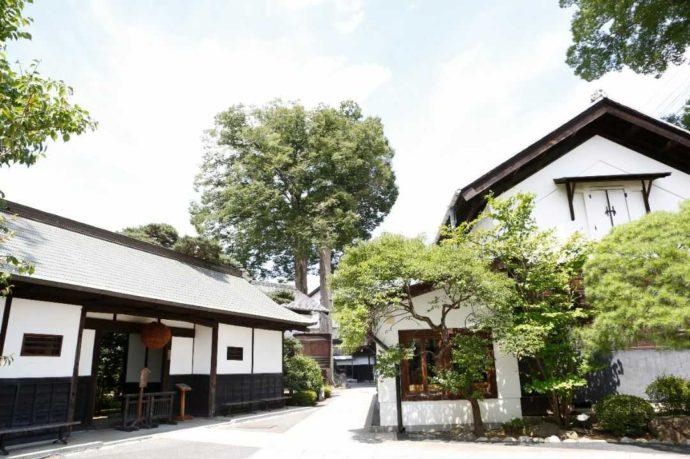 福生のビール小屋がある石川酒造の敷地内