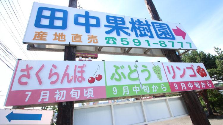 田中果樹園の味覚狩り利用料や収穫システムについて
