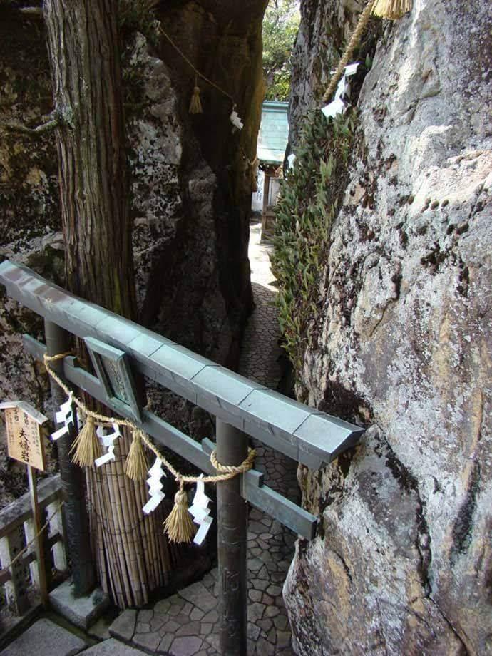 太郎坊宮を訪れた際の観光スポットや見どころはどこでしょうか