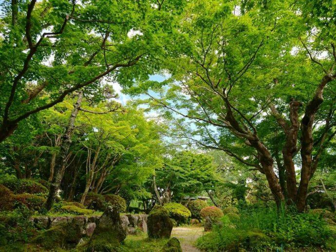千葉県館山市にある城山公園の日本庭園