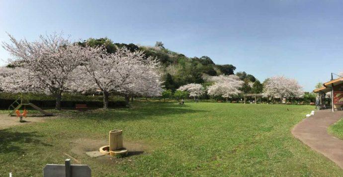 千葉県館山市にある城山公園の芝生広場