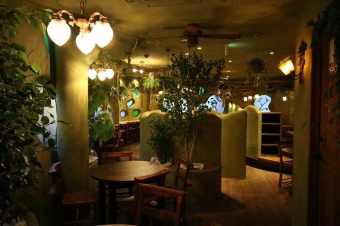 ティーハウスはっぱ店内は優しい照明が使われている