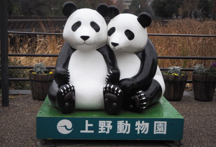 上野動物園のデートプラン
