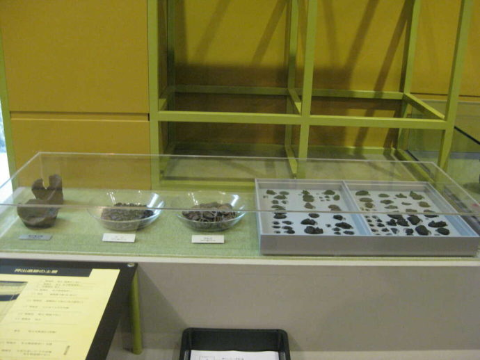 うきたむ風土記の丘考古資料館に展示されている縄文クッキー
