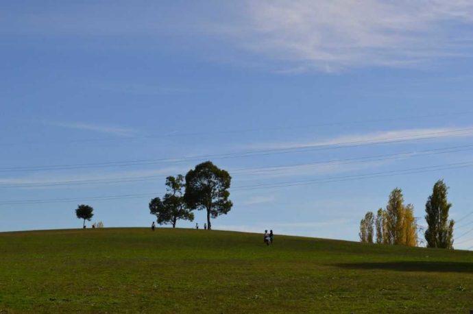 枚方市「山田公園」内の芝生の丘