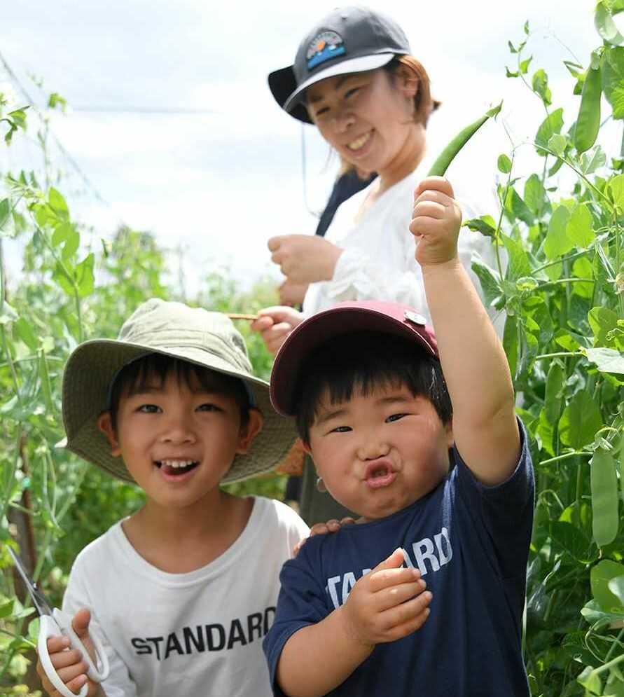 黒豆の収穫体験に参加し、笑顔いっぱいの子どもたち