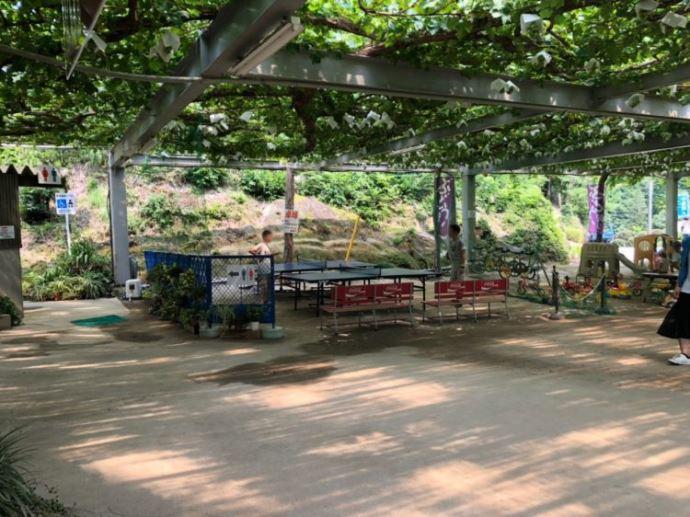 ヤマナカ果園内の施設やアトラクションについて