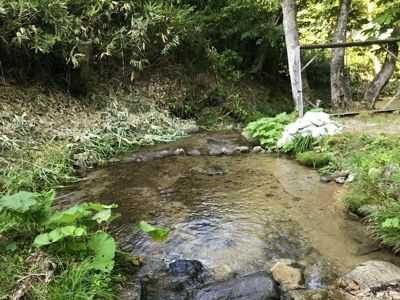 夏でも驚くほど冷たい、山之村キャンプ場内を流れる小川