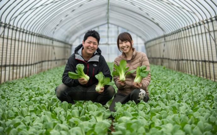 農業専門の婚活サイトRaitai